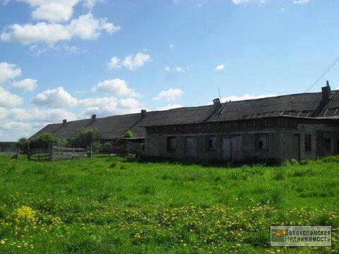 Участок под ферму или иное коммерческое использование - Фото 4