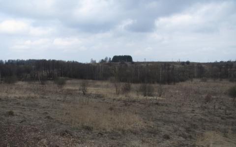 Продам 2,5 га вдоль Новорязанского ш. 35 км от МКАД ок. г. Бронницы - Фото 1
