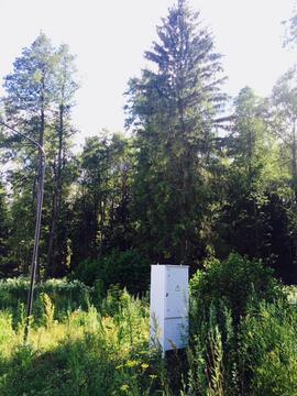 Продаю участок у леса. 15сот. Киевское ш. - Фото 3