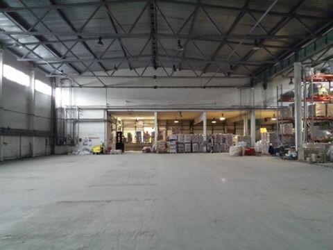 Сдам складское помещение 2443 кв.м, м. Бухарестская - Фото 2