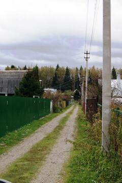 Дом на опушке леса - Фото 4