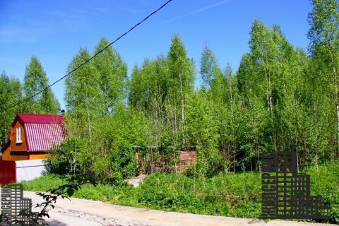 Земельный участок у озера в лесу, электричество, 55 км - Фото 1