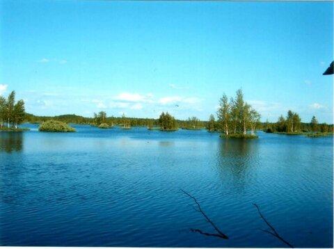 Ладожское озеро , деревня Ириновка - Фото 4