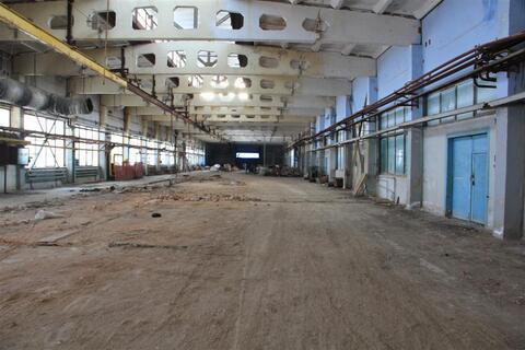 Продам производственный комплекс 22 000 кв.м. с жд веткой - Фото 5