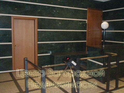 Аренда офиса в Москве, Цветной бульвар Трубная, 280 кв.м, класс B. м. . - Фото 2