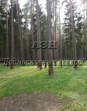 Калужское ш. 32 км от МКАД, Шишкин Лес, Коттедж 1100 кв. м - Фото 4
