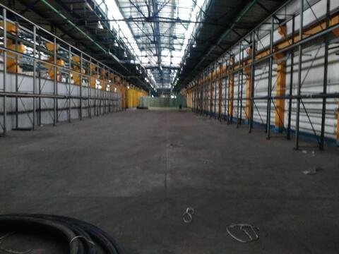 Производственное помещение 1600 кв.м - Фото 5