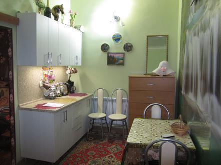 Продаю комнату 20 кв.м. в центре ул. Серафимовича - Фото 1