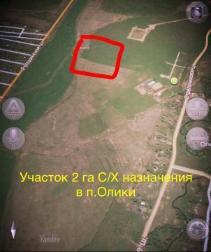 Участок 2га Сельхоз Назначения в деревне Олики. - Фото 1