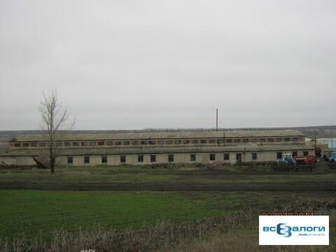 Продажа производственного помещения, Пономаревка, Боковский район, Ул. . - Фото 4
