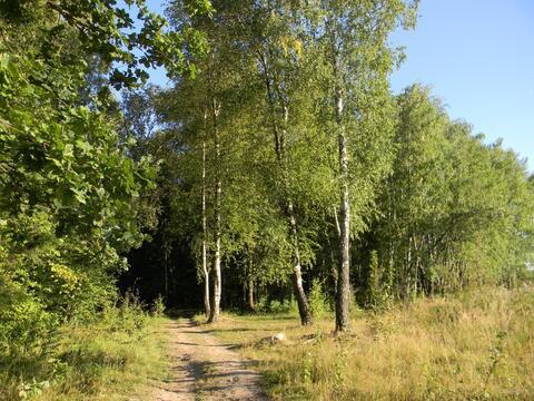 Участок 15 сот. , Киевское ш, 23 км. от МКАД. - Фото 4