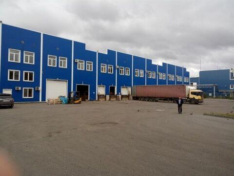 Сдам складское помещение 1401 кв.м, м. Бухарестская - Фото 4
