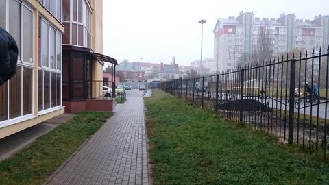 Торговое помещение 58.4 м.кв. ул. Шишкова 72/5 - Фото 4