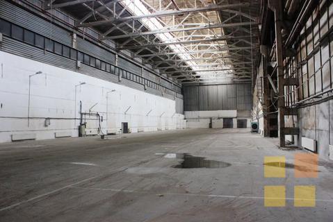 Готовое производство в Сосновом Бору на участке 2,7 га + ж/д ветка - Фото 3