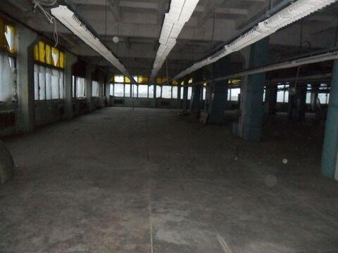 Продам производственное помещение 15400 кв.м, м. Улица Дыбенко - Фото 5