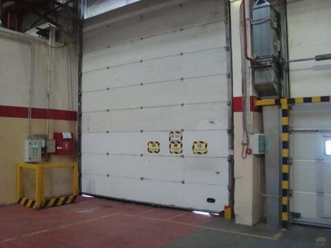 Под склад пр-во 14000 кв.м - Фото 4