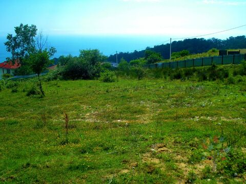 Участок с панорамным видом на море и Олимпийский парк 47 соток - Фото 2