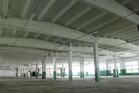 Сдам производственно-складской корпус 9300 кв.м. - Фото 1