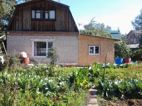 Продам плодоносящий сад «Чайка-2» - Фото 2