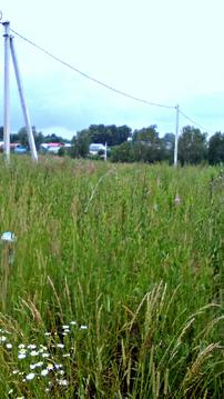 Продается земля ИЖС 20 соток, не коттеджный поселок, красивое место - Фото 4