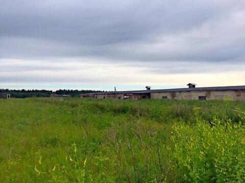 Земля с\х назначения для кфк 2 га+1 эт. здание под ферму 1302 м/кв - Фото 3