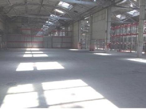 Сдам производственно-складские площади 2016 кв.м. - Фото 4