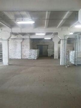 Сдам складское помещение 445 кв.м, м. Международная - Фото 3