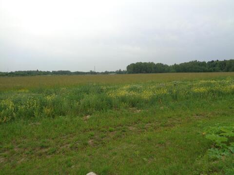Продается земельный участок 18 соток ИЖС, д.Поляны - Фото 3