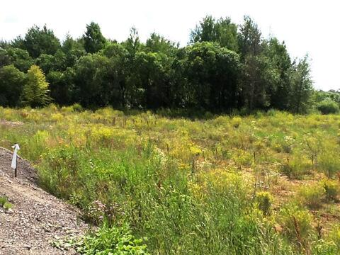 Земельный участок возле леса 9,5 соток д.Никульское (с.Остафьево) - Фото 4