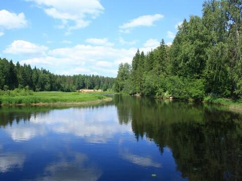 Поселок за Лебяжьими Озерами , Бойково - Фото 1