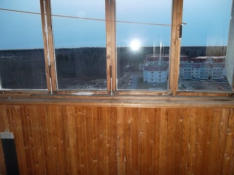 Сдам 1-комнатную квартиру в Тосно - Фото 4