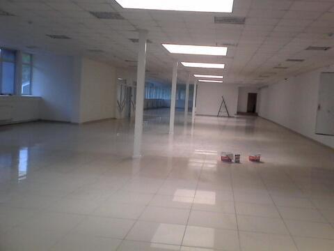 Торговое помещение в торгово-офисном здании на ул. Курчатова. 180 кв.м - Фото 4