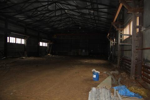 Продам производственно-складскую площадь 3500 кв.м. - Фото 4
