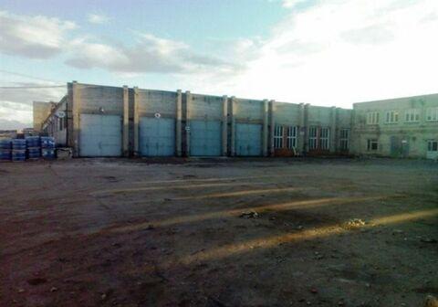 Сдам складское помещение 3500 кв.м, м. Звездная - Фото 5