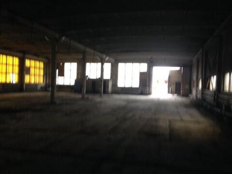 Сдам складское помещение 1240 кв.м, м. Звездная - Фото 5