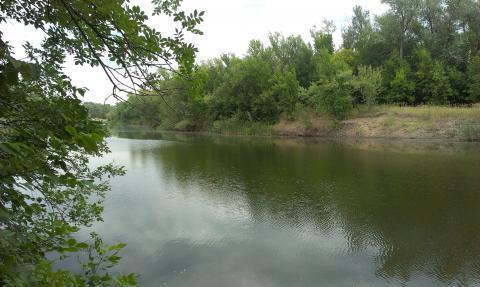 Земельный участок на берегу р. Ахтуба - Фото 4