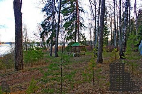 Земельный участок 8,8 га (880 сот.) на берегу Истринского вдхр. - Фото 3