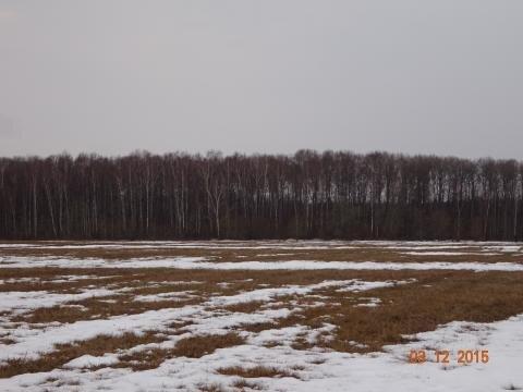 Участок 630 соток, в 5 км. от города Таруса - Фото 3