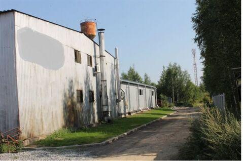 Продам производственное помещение 1205 кв.м, м. Проспект Просвещения - Фото 3