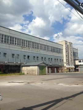 Сдается хол. склад на 1эт, 347.7м2, ул. Софийская - Фото 3