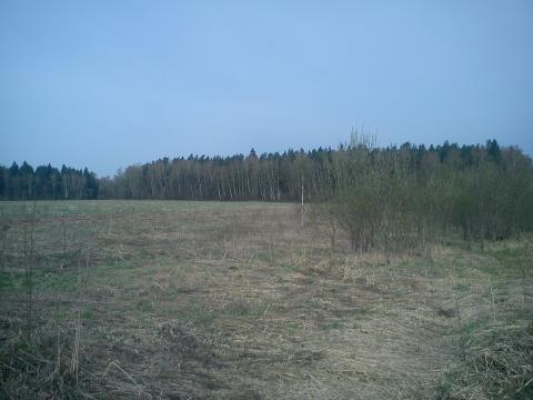 Участок д. Семенково - Фото 4