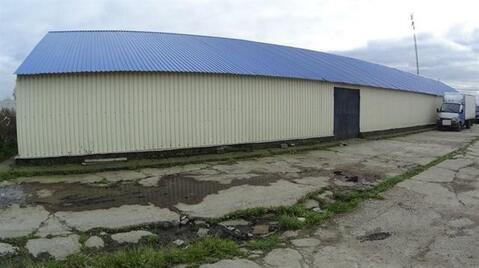 Сдам складское помещение 440 кв.м, м. Проспект Ветеранов - Фото 1