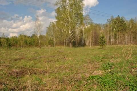 Продам: земельный участок 25 соток - Фото 2