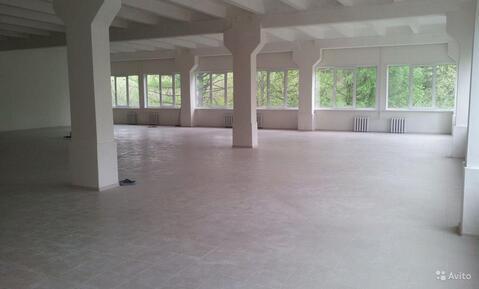2 помещения на первом этаже для чистого производства или склада - Фото 2