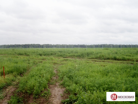 Продажа земельного участка в Чеховском районе - Фото 3