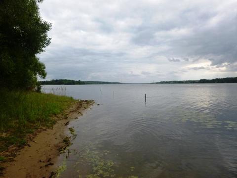 Продается участок с баней 226,6кв.м. на 1-линии р. Волга д. Бурцево - Фото 2