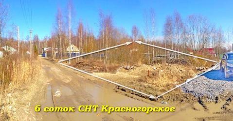 Земельный участок 6 соток, СНТ Красногорское - Фото 3