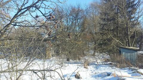 Продается земельный участок 14 соток со старым домом в дер.Марушкино - Фото 4