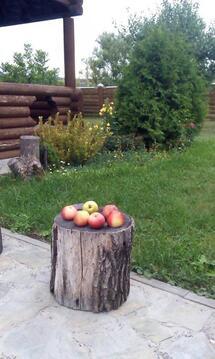Аренда дома, Петропавловка, Белгородский район - Фото 3