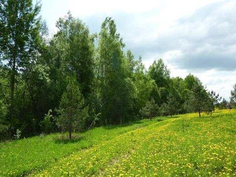 Запорожское + 9 км , деревня Удальцово - Фото 3